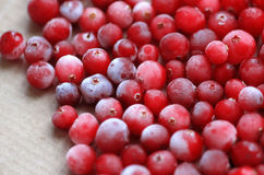 Fresh juicy ripe cranberries Royalty Free Stock Photo