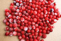 Fresh juicy ripe cranberries Royalty Free Stock Images
