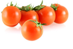Fresh juicy small tomato with a few Stock Images