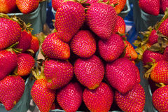 Fresh Juicy Strawberries in Vancouver's Grandville Island Market Stock Image