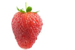 Fresh juicy strawberry. Covered in water droplets isolated on a white background Stock Photos