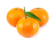 Fresh juicy tangerine Stock Images