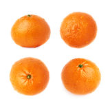 Fresh juicy tangerines fruits covered with the multiple water drops, isolated over the white background Stock Photography
