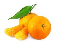 Fresh juicy tangerines Royalty Free Stock Photos
