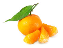 Fresh juicy tangerines Royalty Free Stock Image