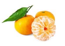 Fresh juicy tangerines Stock Photos