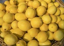 Fresh juicy, thin lemons with thin crust Royalty Free Stock Photo