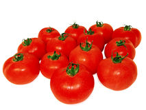 Fresh juicy tomatoes. On a white background royalty free stock images