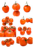 Fresh juicy tomatoes on a white background Stock Photos