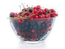 Fresh juicy various berries in glass bowl Stock Photo