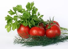 Fresh and juicy vegetables Royalty Free Stock Image