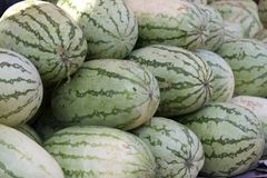Fresh juicy water-melon on a counter in the market of India of Goa Stock Photo