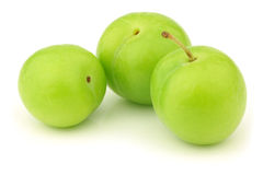 Fresh jujube fruit (Ziziphus jujuba) Stock Image