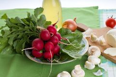 Fresh just harvested bunch of radishes on green towel. Horizontal photo of Fresh just harvested bunch of radishes on green towel together with spinach leaves Stock Image