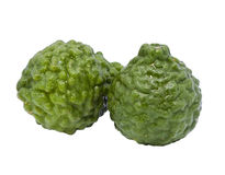 Fresh Kaffir Lime Stock Photography