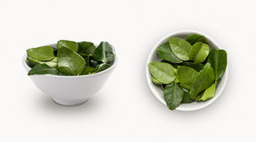Fresh kaffir lime leaf in a bowl Royalty Free Stock Image