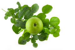 Fresh Kaffir lime leaves and green apple isolated Stock Photo