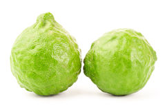 Fresh Kaffir Lime. On white background Royalty Free Stock Photography
