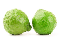Fresh Kaffir Lime. On white background Stock Photos