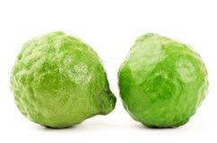 Fresh Kaffir Lime Stock Photos
