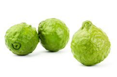 Fresh Kaffir Lime. On white background Stock Image