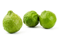 Fresh Kaffir Lime. On white background Royalty Free Stock Photo