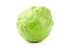 Fresh Kaffir Lime Royalty Free Stock Photos