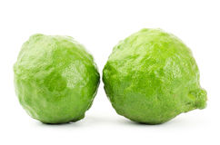 Fresh Kaffir Lime Royalty Free Stock Photography