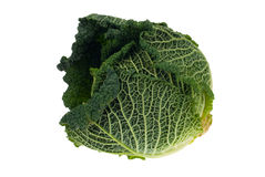 Fresh kale Royalty Free Stock Image