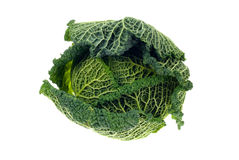 Fresh kale Royalty Free Stock Photo