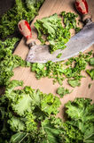 Fresh  kale chopping with old mincing knife Royalty Free Stock Photo