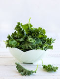 Fresh kale Stock Photography