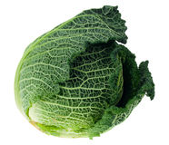 Fresh kale isolated Royalty Free Stock Photos