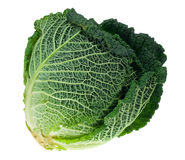 Fresh kale isolated Stock Images