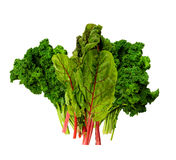 Fresh Kale and Swiss Chard Royalty Free Stock Image