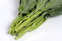 Fresh kale. Stock Photo