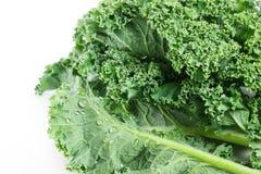 Fresh kale on white background Stock Image