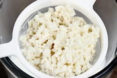Fresh Kefir Grains in Strainer Stock Images