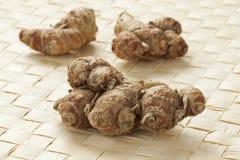 Fresh kencur rhizomes Royalty Free Stock Photos