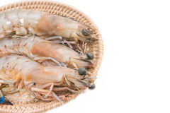 Fresh king prawns in basket isolated on white Stock Photos