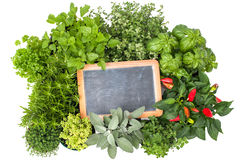 Fresh kitchen herbs Stock Photography