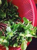 Fresh Kitchen Mint on street market Stock Photo