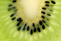 Fresh kiwi. Fruit royalty free stock images