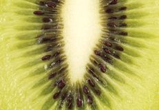 Fresh kiwi background Stock Image