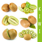 Fresh kiwi collage Royalty Free Stock Photography
