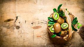 Fresh kiwi fruit in an old basket with leaves. Royalty Free Stock Image