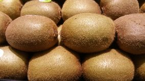 Fresh Kiwi Stock Photos