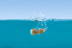 Fresh kiwi halves falling into water with splashes. Side view of fresh kiwi halves falling into water with splashes Royalty Free Stock Photos