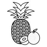 Fresh kiwi with pineapple and orange royalty free illustration