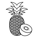 Fresh kiwi and pineapple vector illustration
